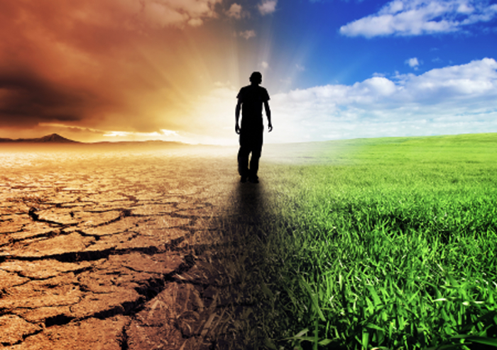 Chronische & unklare Erkrankungen