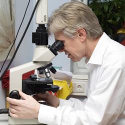 Dr. med. Siebenhüner - Mikroskop